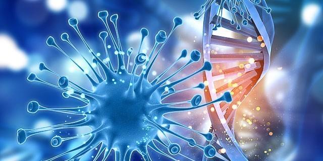 Čuvanje matičnih ćelija - DA ili NE