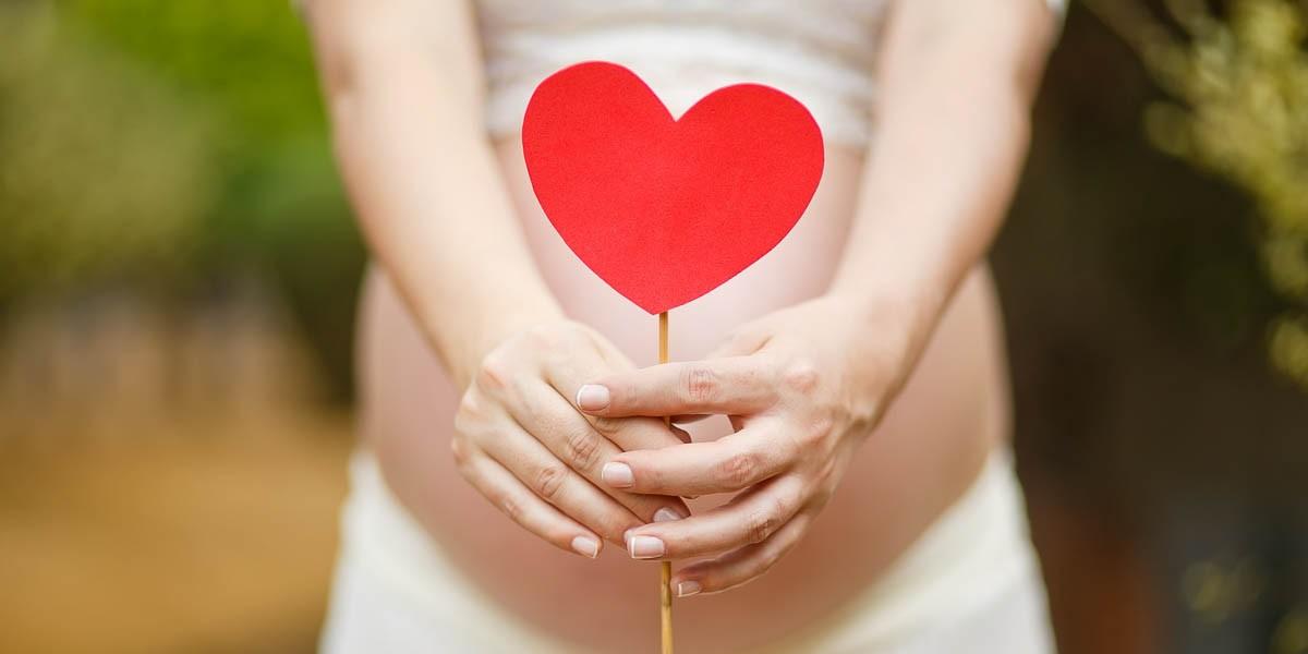 27. nedelja trudnoće