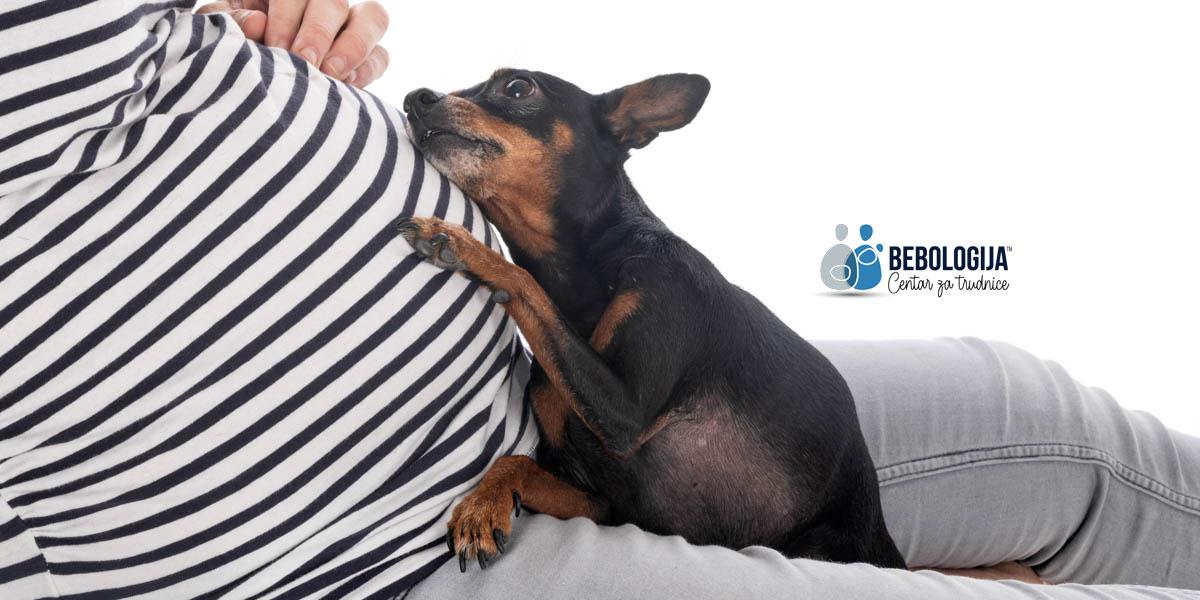 Psi i deca - kada rastu zajedno